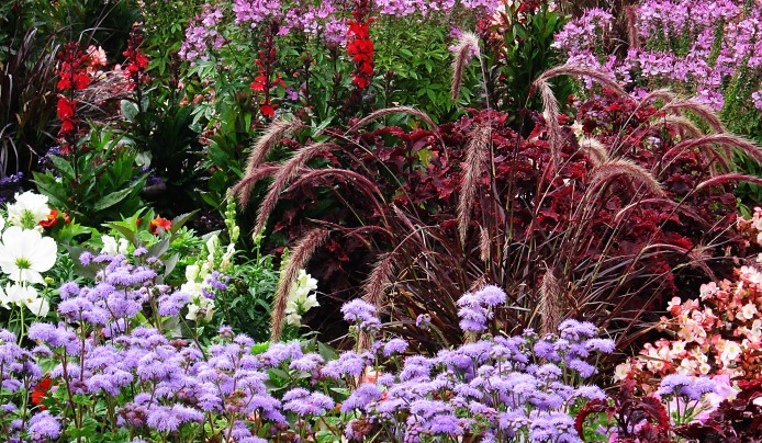 garden design plant palettes sunny dry shady moist pests pollinator arboretum summit new jersey