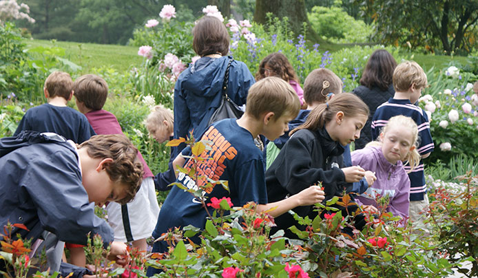 Students pollenating flowers at Reeves-Reed Arboretum