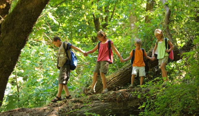 summer camp Summit New Jersey post kindergarten ages 5 to 8 arboretum nature