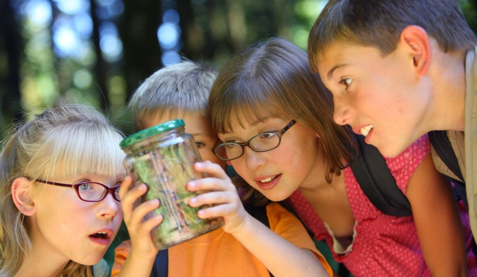 summer camp Summit New Jersey preschool ages 4 to 5 arboretum nature
